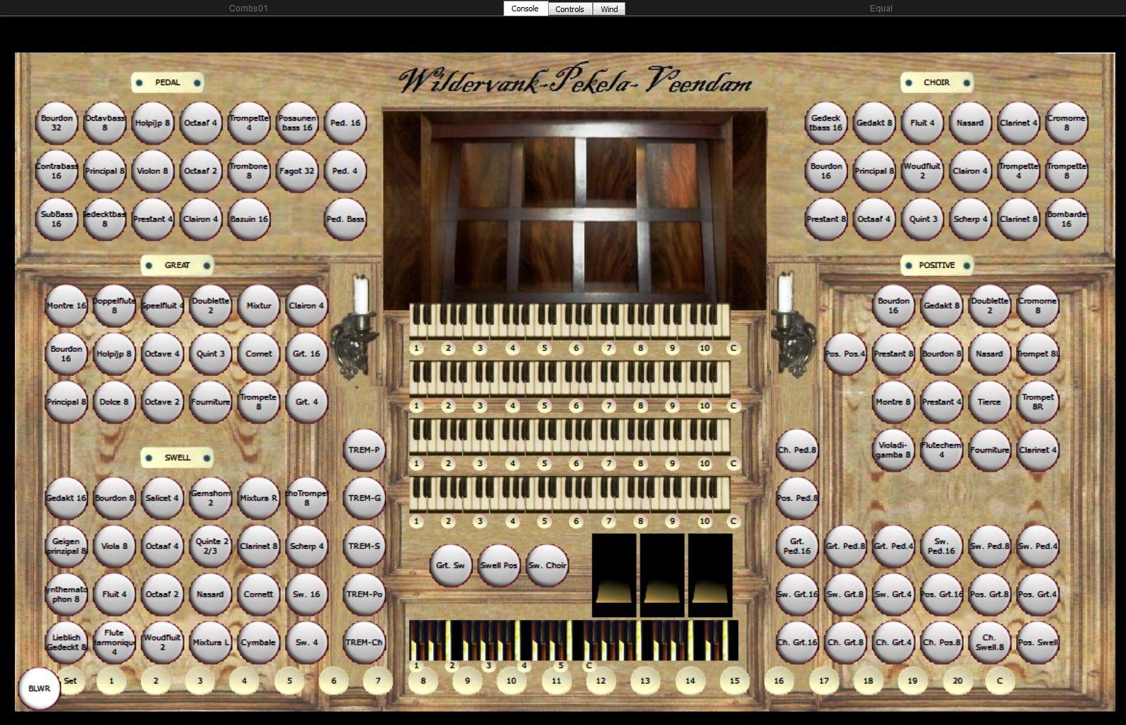 Large organ